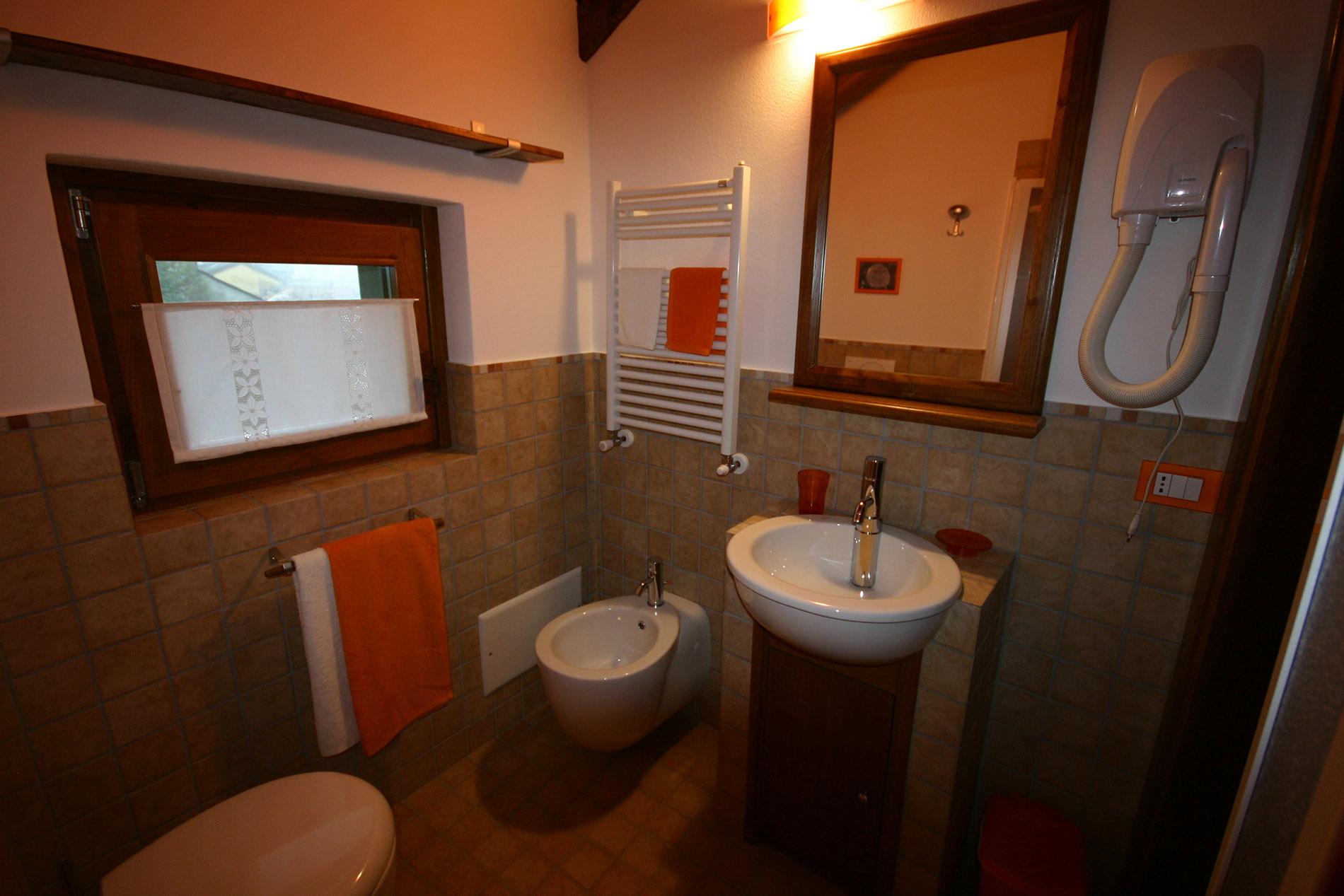 Bagno - Formiche in bagno ...
